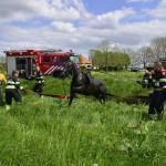 GB 20140503 009 Paard te water Kerkweg