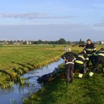 20161008-09u11-gb-005-dier-te-water-inlaagpolder-spd