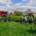 GB 20140503 006 Paard te water Kerkweg