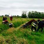 GB 20140529 003 Paard te water Lagedijk Spaarndam