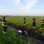 GB 20140707 002 Koe te water Lagedijk