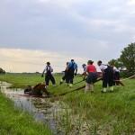 GB 20140719 002 Paard te water Inlaagpolder