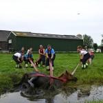 GB 20140719 014 Paard te water Inlaagpolder