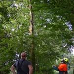 GB 20140812a 004 Stormschade Zijkanaal C Ringweg